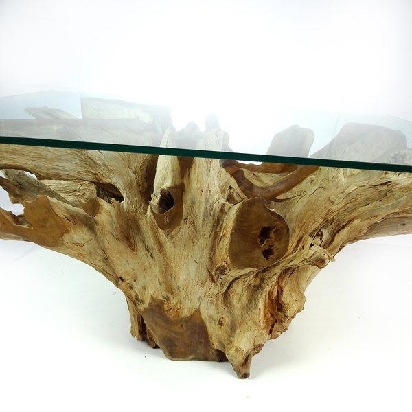 batu glass top large rectangular teak root trunk coffee table 100cm x 70cm