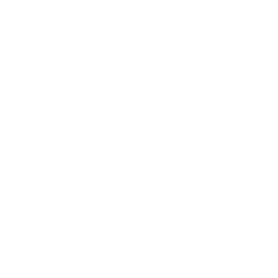 Feuer Barbecue Icon