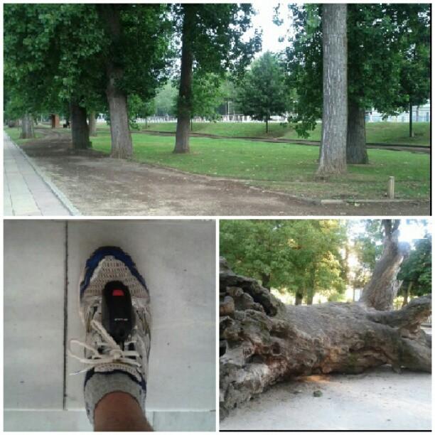 """El """"grillo"""" y parajes de #running"""