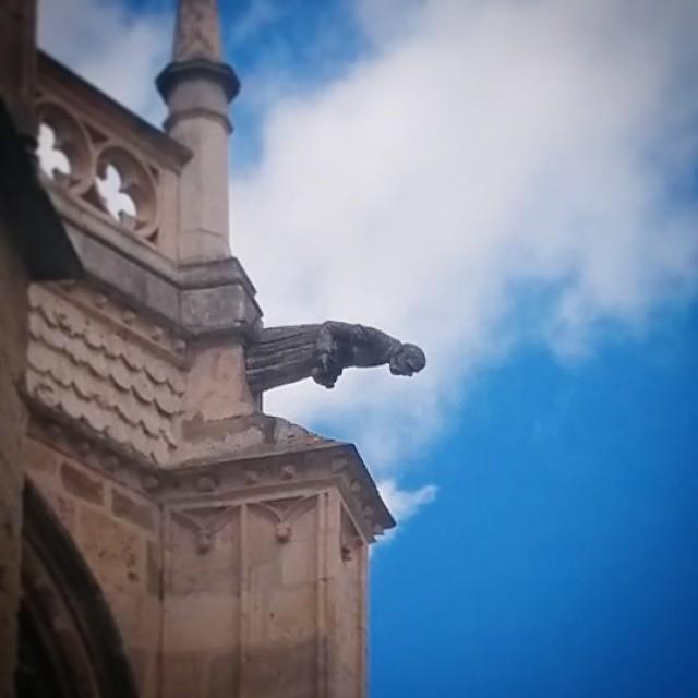 El fotógrafo de La Bella Desconocida fotografiado. Típico de #Palencia