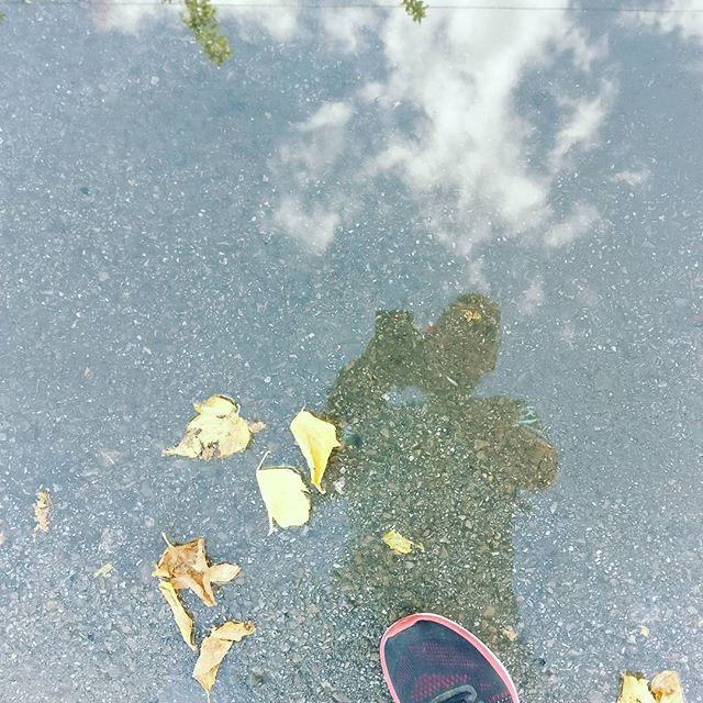 Ahora sí que es #otoño en #Granada