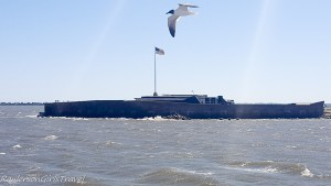 Seagull flying above Fort Sumter