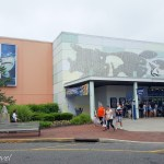 Adventure Aquarium - Camden A Day Trip from Philly
