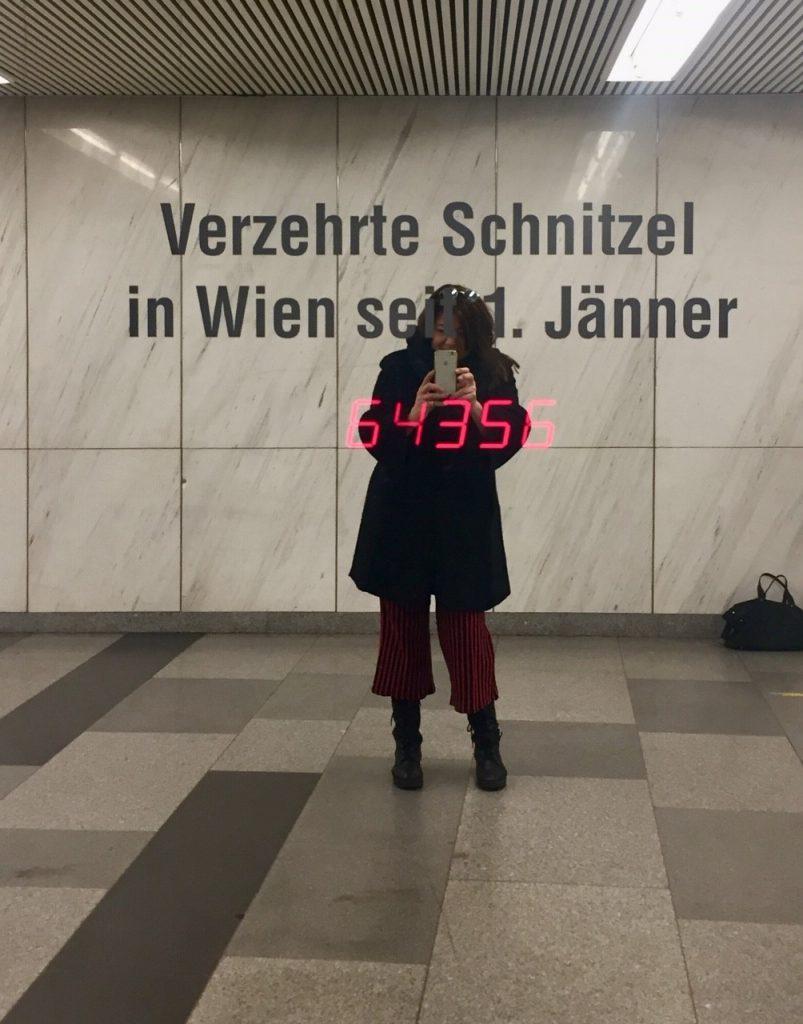 Tipps rund um Wien und Wiener Schnitzel