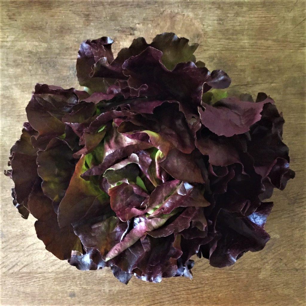 Bei keto ernährung muss man viel Salat essen