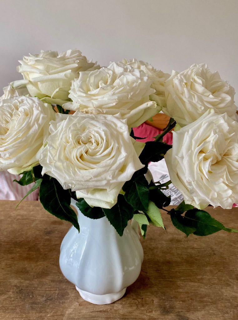 wunderbare Woche. Rosen heben die gute Laune.