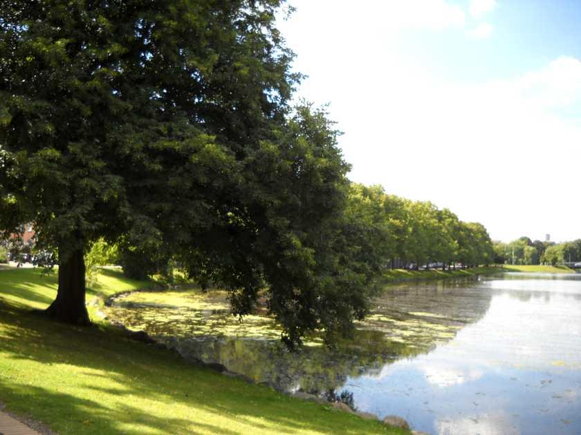 Kiel Park