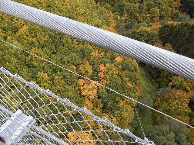 Hängebrücke Hunsrück Blick ins Tal
