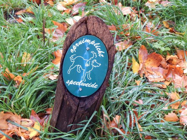 Ein Schild weist auf die Hundespielwiese im Park hin.