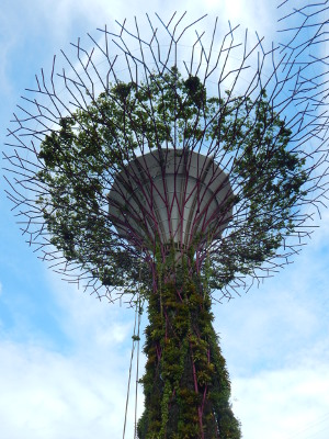 Gardeny by the Bay, Supertree