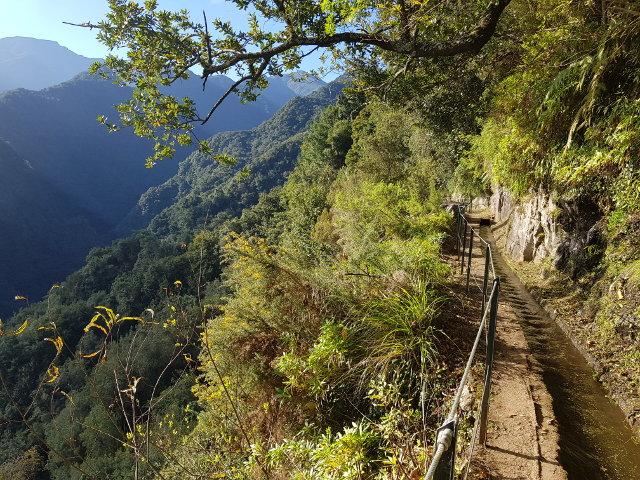 Levada do Rei, Madeira.