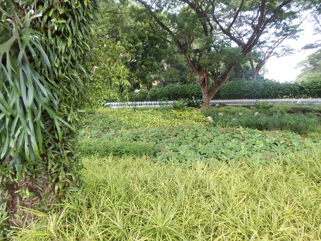 Das grüne Singapur ist voller Parks