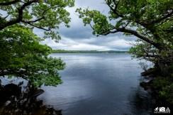 Irland - Muckross Lake 6