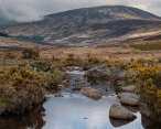 Glendasan River, Wicklow Mountains