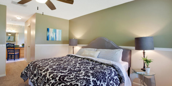 Staging colorful rooms with Rave in Jacksonville (2)