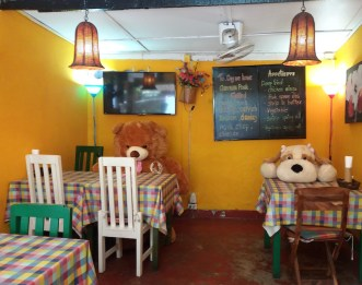 animals-in-cafe