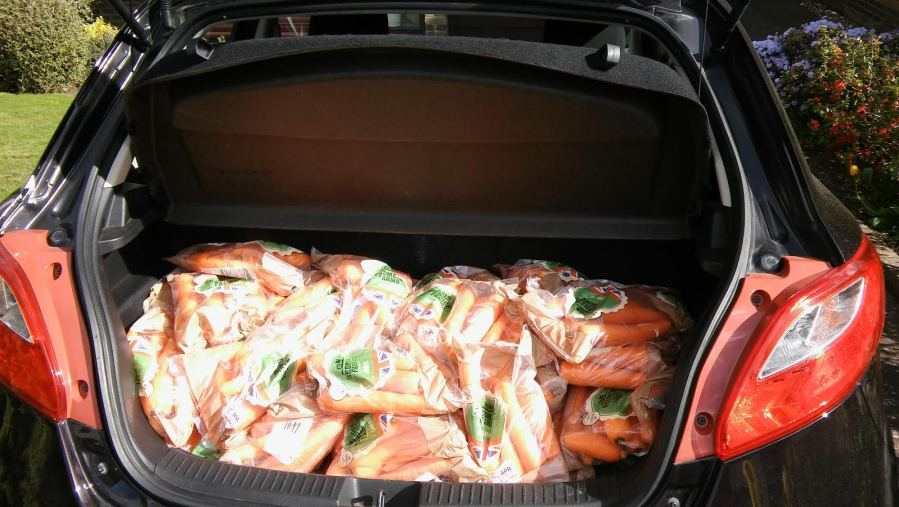 A boot full of carrots
