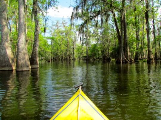 Magical Kayak Journey