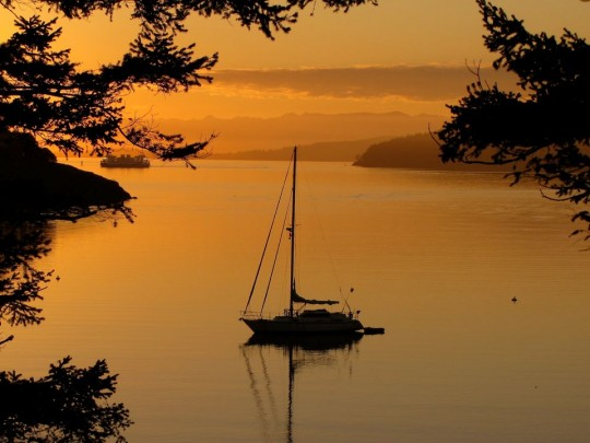 Living Local On Lopez Island
