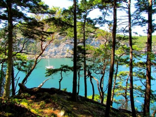 Turquoise Watmough Bay