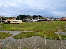 Wetlands behind the RV Park