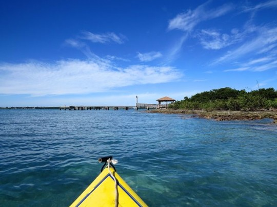 Kayaking To Indian Key