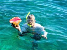 A Queen Conch (returned to the ocean after admiring it)