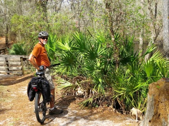 Biking The Trails At O'Leno State Park