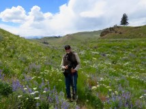 Hip deep in wildflowers