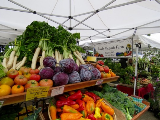 Fall Abundance At The Eugene Farmers' Market