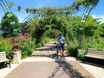 The Owens Rose Garden
