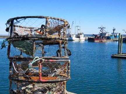 Crab traps at the pretty little Westport Marina