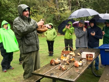 Learning about wild mushrooms at Ft. Stevens State Park