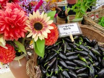 Port Townsend Farmers' Market