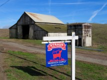 Historic dairy farm and one of our favorite organic ice creams