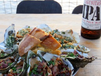 Oysters by Tomales Bay