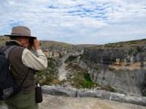 Views along the Canyon Rim Trail