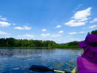 Stony Creek Ponds