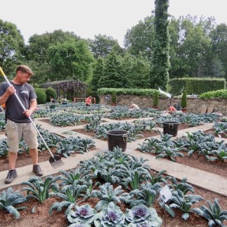 Installing the fall Quilt Garden
