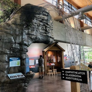The displays at the visitor center are excellent