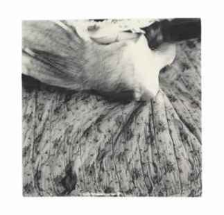 francesca_woodman_untitled_1977-1978_d5779639h