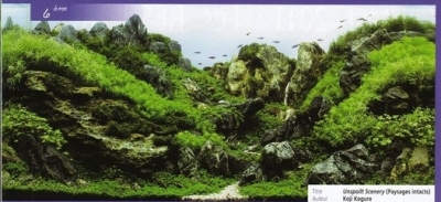 IAPLC 2011-Top 10 (6/6)
