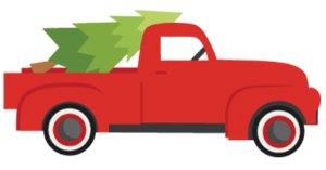 Christmas Tree Pick-Up Service