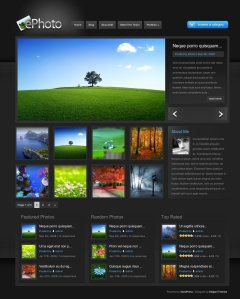Ephoto premium wordpress theme for photographers from elegant themes