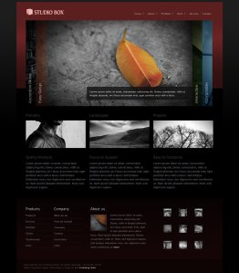 Studio box premium wordpress theme for photographers from themeforest