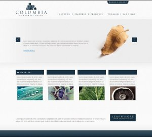 Columbia corporate premium WordPress theme for business from Theme forest