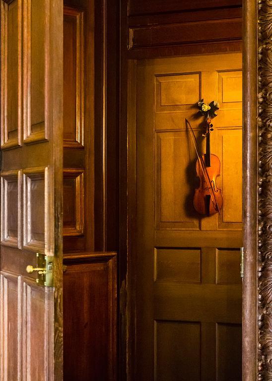 Violin Door