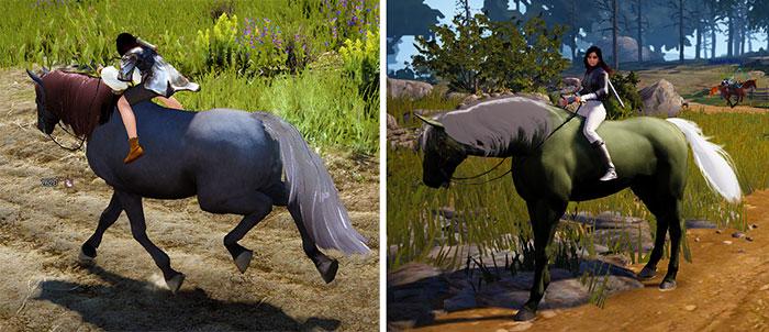 Black Desert Horses