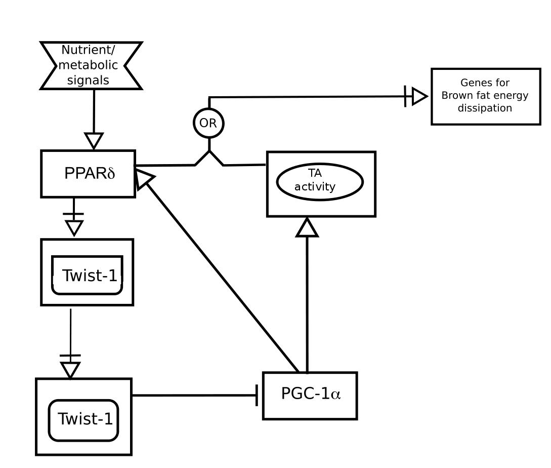 AF_node · sbgn/sbgn Wiki · GitHub