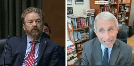 'You're Not The End All': Rand Paul Slams Fauci In Heated Exchange Over Lockdowns